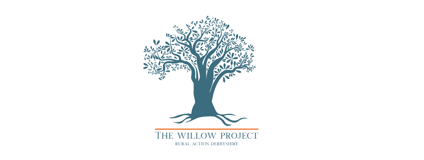 Introducing The Willow Project